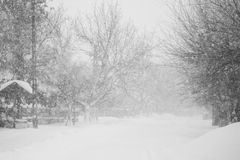 Snowing a lot in the lane. Over the trees and houses Royalty Free Stock Image