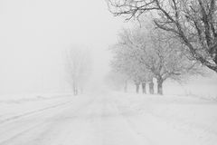 Snowing a lot in the lane. Over the trees and houses Royalty Free Stock Photos