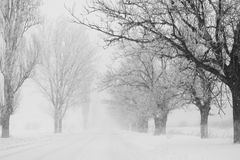 Snowing a lot in the lane Royalty Free Stock Photos