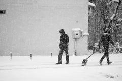 Snowing miastowy krajobraz z ludźmi przechodzi obok Zdjęcie Royalty Free