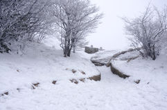 Snowing Mount Huangshan in China Stock Photography