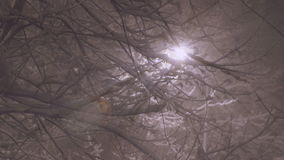 Snowing At Night With Ray lights From Chandelier stock video footage