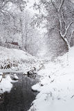 Snowing over a winter stream Royalty Free Stock Images