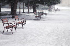 Snowing in the park. Around row park bench Stock Image