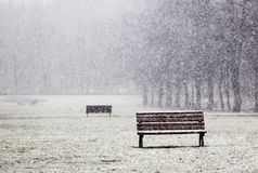 Snowing in the park bench Stock Photos