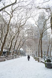 Snowing in the Park Stock Photography