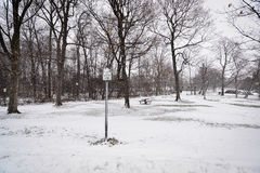 Snowing in the park Stock Photo