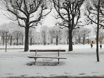Snowing in Reims stock photography