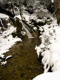 Snowing River Stock Image
