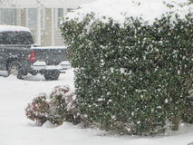 Snowing on Snow Royalty Free Stock Image