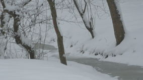 Snowing on Tiny River. View of snowfall in the forest stock video footage