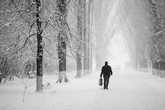 Snowing urban landscape with people passing by Stock Photography