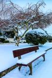 Snowing w cmentarniany II Zdjęcie Royalty Free
