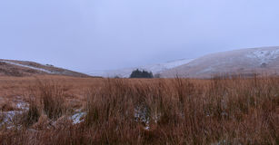 Snowing in welsh hills Royalty Free Stock Image