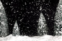 Snowing winter background Royalty Free Stock Image