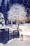 Snowing in winter evening garden. Snowfall in winter home garden evening stock images