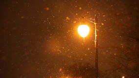 Snowing winter night