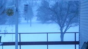Snowing on a wintry day stock footage