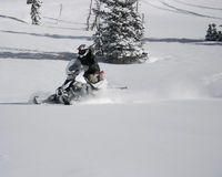 Snowmachine or snowmobile rider 9. A snowbachine or snowmobile rider on fresh powder 9 Royalty Free Stock Image