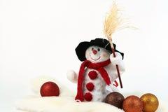 snowman Arkivbild