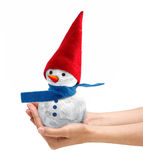 Snowman Royalty Free Stock Photo