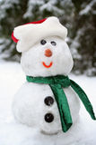 Snowman. Smiling fase with red hat tied Stock Image