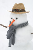 Snowman. A snowman with a carrot for a nose and two eyes of coal Royalty Free Stock Photography