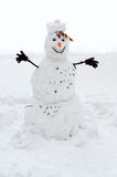 Snowman. In snow and a white background Royalty Free Stock Image