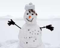Snowman. With carrot nose and hands in gloves Stock Images