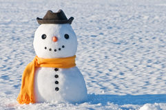 Snowman. Cute snowman on snowy field Royalty Free Stock Photo