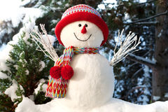 Snowman. Symbol made in winter time with bonned and scarf Stock Image