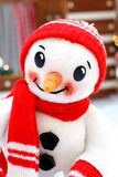 Snowman. Plush snowman in a skull cap and scarf Stock Images