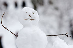 Free Snowman Royalty Free Stock Photography - 18045007
