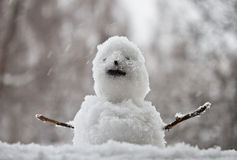 Snowman. In a winter setting Royalty Free Stock Photography