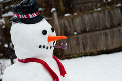 Snowman Stock Photos