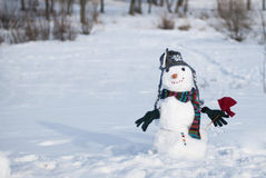 Snowman. Wih the flower in the hand Stock Photography