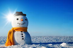 Snowman. Look in sky and wait spring Royalty Free Stock Photography