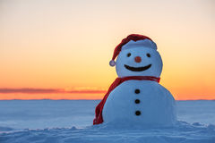 Free Snowman Stock Image - 33863801