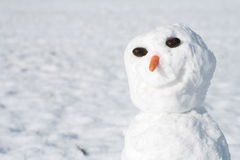 Free Snowman Stock Image - 352291