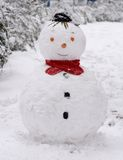 Snowman. A snwoman with red neckcloth in the winter Royalty Free Stock Images
