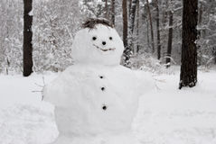 Free Snowman Royalty Free Stock Photography - 59117277