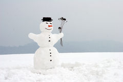 Free Snowman Stock Image - 663191