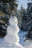 Snowman. In the winter forest Royalty Free Stock Image
