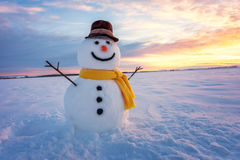 Free Snowman Royalty Free Stock Photography - 81776747