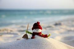 Free Snowman Royalty Free Stock Image - 98317516