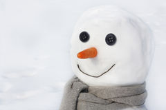 Snowman against snowy field. Royalty Free Stock Image