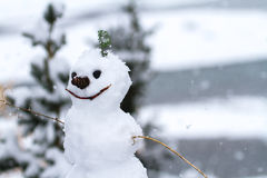 Snowman in Alaska. A snowman in Alaska during fresh snowfall. Small twig arms, detailed with a smiley face Stock Image