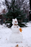 Snowman with autumn leaves on a background of green spruce. Stock Image
