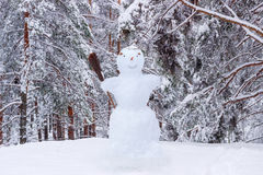 Snowman on the background of snow-covered pine forest Royalty Free Stock Photography