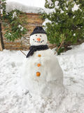 Snowman background. Snowman on the snow has carrot noise Royalty Free Stock Photos